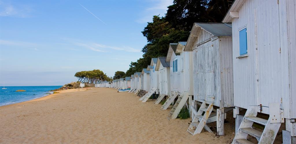 Camping Prs De Noirmoutier En Vende  Camping Vende  Tourisme Et